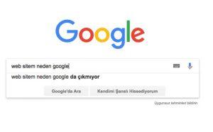 Web sitem neden Google'da cikmiyor